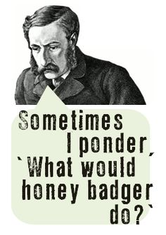 Haha! I like to ask myself this all the time! Honey Badger dont care, Honey badger dont give a s*** !!!