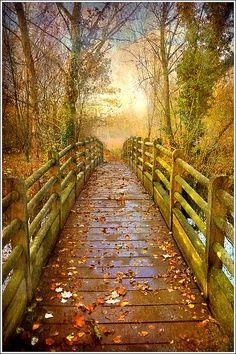 Awesome.I wanna take a slooooow romantic stroll over this bridge with my hand in my hubby's,during sunset.......