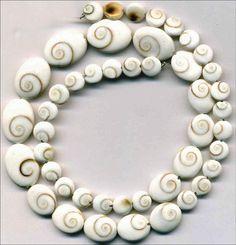"""Shiva Spiral Shell Beads Graduated 8-15mm 16.5"""" Strand 46 wonderful beads!"""