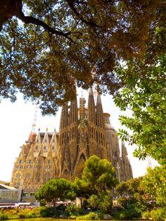#sagradafamilia #barcelona #spain #spaintravel #church #gaudi #spainbucketlist #barcelonatravel #barcelonaspain