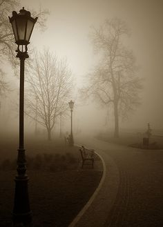 street lamp - lovely photo, wish I knew where this was.