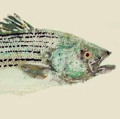 Bar rayé frottement Gyotaku poisson à tirage par fredfisher
