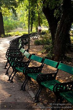 Bucharest, Romania: Green benches in Cismigiu Garden Capital Of Romania, Places To Travel, Places To Visit, Places Worth Visiting, Little Paris, Bucharest Romania, My Town, Homeland, Benches