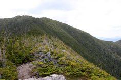 Mont Carrigian, New Hampshire, mai 2016 New Hampshire, Country Roads, Mountains, Nature, Travel, Mountain Range, Naturaleza, Viajes, Destinations