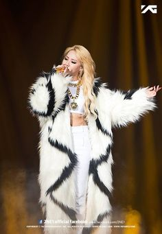 CL | 2NE1 ALL OR NOTHING 2014 WORLD TOUR IN SEOUL x OLYMPIC PARK