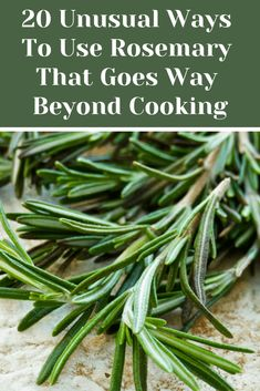 Rosemary is one of the most aromatic and pungent herbs around, here are 20 creative ways to use this wonderful versatile herb and not just in delicious tasting recipes.