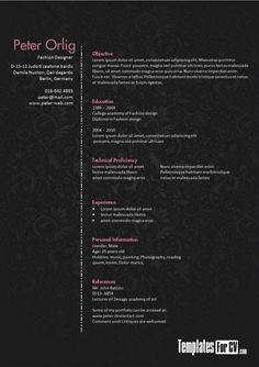 25-Awesome-CV-Templates-and-Examples-2