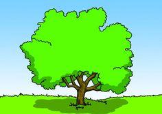 Baum Fantasiereise