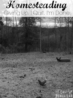Homesteading Giving Up. I Quit. I'm Done.