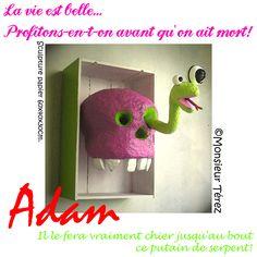Monsieur Térez, Adam