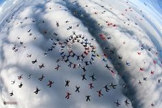 Large group of skydivers