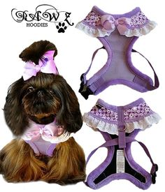 Purple All Dressed Up Harness