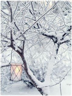 #Beautifulthings #Snow #Winter #Lighting