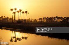 Stock Photo : Nile Delta, Egypt.