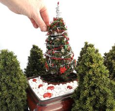 items similar to oh christmas tree for miniature garden fairy garden centerpieces holiday gifts living dwarf spruce tree with mini decorations