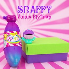 Snappy Venus Fly Trap says Happy Tuesday! Go Bananas, Collectible Toys, Fly Traps, Happy Tuesday, Venus, Water Bottle, Space, Fun, Floor Space