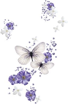 59 Trendy Ideas for flowers png decoupage Butterfly Images, Butterfly Wallpaper, Butterfly Cards, Butterfly Flowers, Beautiful Butterflies, Cellphone Wallpaper, Iphone Wallpaper, Art Papillon, Decoupage Paper