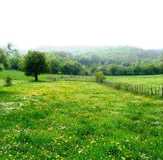 Nature http://www.benefitsofnature.net/