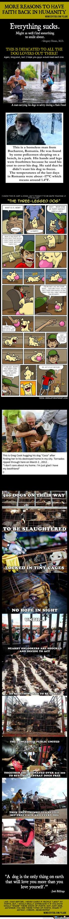 Restore My Faith In Humanity