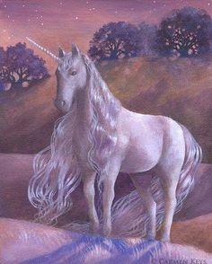 2018/01/01 Unicorn