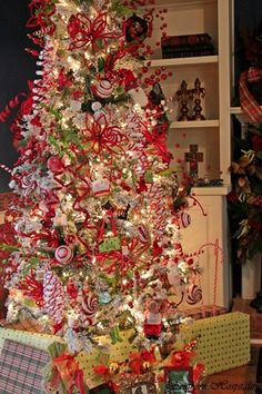Red and white Christmas tree . .