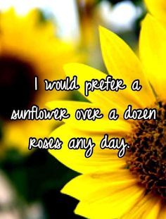 I love Sunflowers, and Daisies too