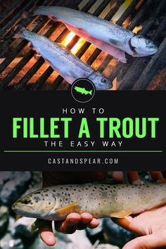 Trout are fun to catch and even better to eat. Use this guide to learn how to fillet a trout the easy way. Trout Fishing Tips, Walleye Fishing, Fishing Knots, Fishing Guide, Best Fishing, Fishing Lures, Fly Fishing, Women Fishing, Fishing Tricks