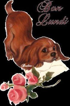Gif Animé, Animated Gif, Bisous Gif, Image Fb, Cavalier King Charles, Gifs, Dog Art, Photos, Pictures