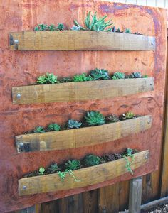 Vertical succulent p  Vertical succulent planter with wine barrel staves and copper.