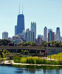 America's Top Free Attractions: Lincoln Park Zoo