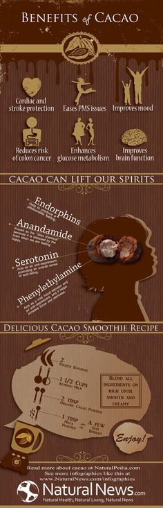Benefits of Cacao Infographic, Cacao bits in a bag are available at Lange Nutirtion Center in Clearwater. Dr. Michael Lange recommends these for all his patients especially with macular degeneration.