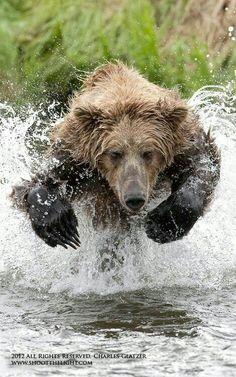 Ummmm....run!!