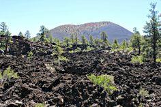 Amazing lava flows there...  More info: http://teatimeinwonderland.co.uk/lang/en/2014/06/09/roadtrip-usa-sunset-crater-volcano