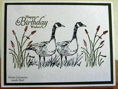 Stampin Up Wetlands; I LOVE this stamp set!