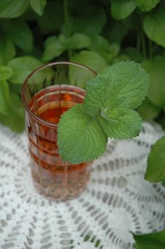 Herbal Tea, Mint: helps with upset stomach, decongestant, dry cough, alertness, and focus.