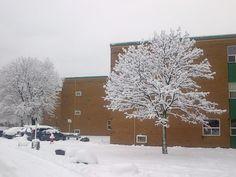 Kingston Ontario Kingston Ontario, Snow, Places, Nature, Outdoor, Outdoors, Naturaleza, Outdoor Games, Outdoor Life