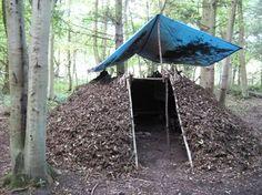 Bushcraft shelter in progress!