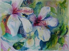 Watercolors by Celia Blanco: White Hibiscus Blooms