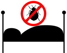 ed bugs not only live in beds but also in furniture, clothing, suitcases, and sometimes even boxes. They can be transmitted from person to person unknowingly, especially in little kids. A lot of the time, these little bugs will go unnoticed for a while because their bite can resemble a mosquito bite. The good thing is your clothing dryer can kill the bed bugs on your clothing and bed sheets!
