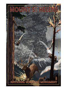 Mount St. Helens - Eruption Scene with Elk