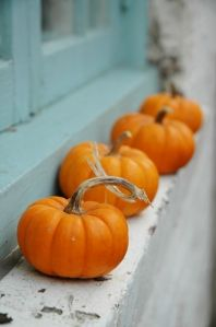 Who Has the Pumpkin? Social Skills Game - - Pinned by #PediaStaff.  Visit http://ht.ly/63sNt for all our pediatric therapy pins