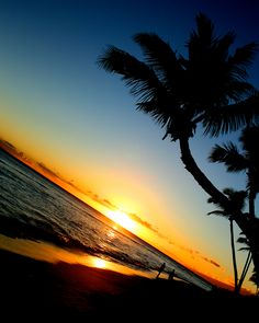 Photography by Nicholas Speer #sunset #hawaii #paradise  #art #photography
