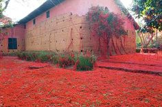 From Trend Tablet. Art installation of red weaving.