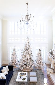 All white trees... groupings
