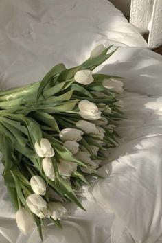 Beige Aesthetic, Flower Aesthetic, Aesthetic Plants, My Flower, Beautiful Flowers, Images Esthétiques, Aesthetic Pictures, Aesthetic Wallpapers, Planting Flowers