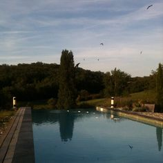 Bled pool! y a pire comme endroit