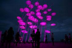 Breast walk nashua inspiring cancer making community
