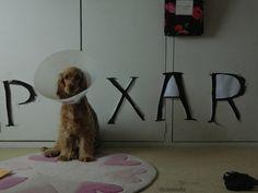 Check Out Pixar's Brand New Adorable Logo