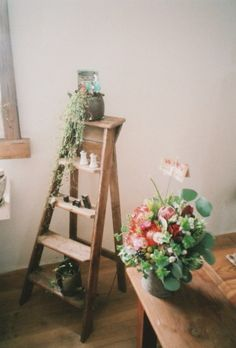 Wooden Ladder, Plants