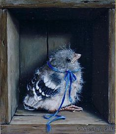 Птицы в иллюстрациях Suzan Visser.